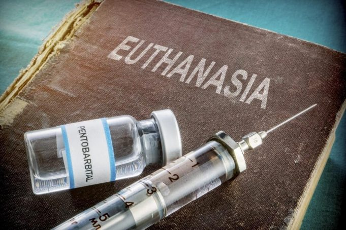 Euthanasia mercy killing